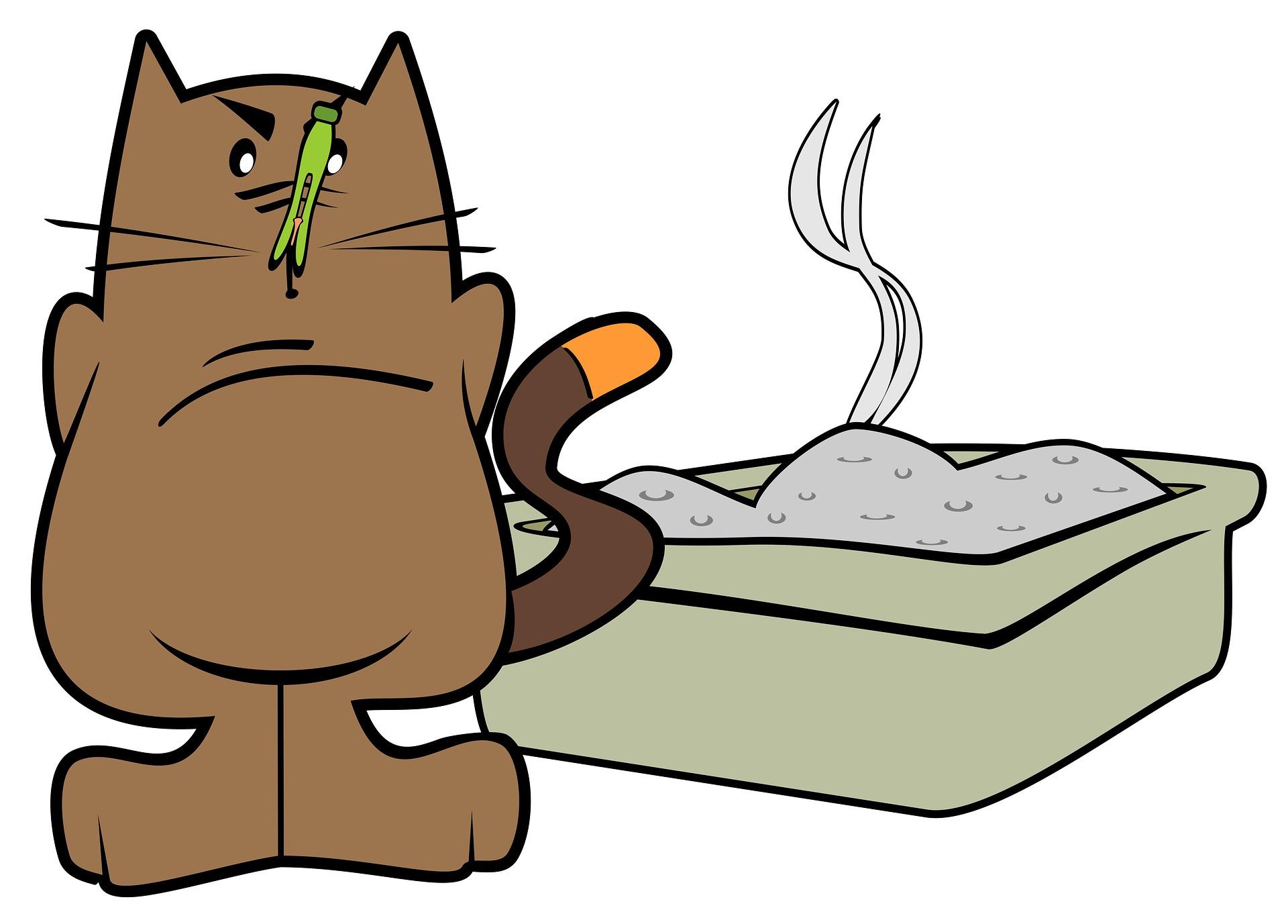 고양이 모래 화장실