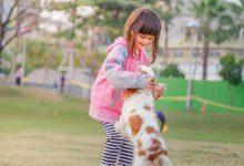강아지와 아이