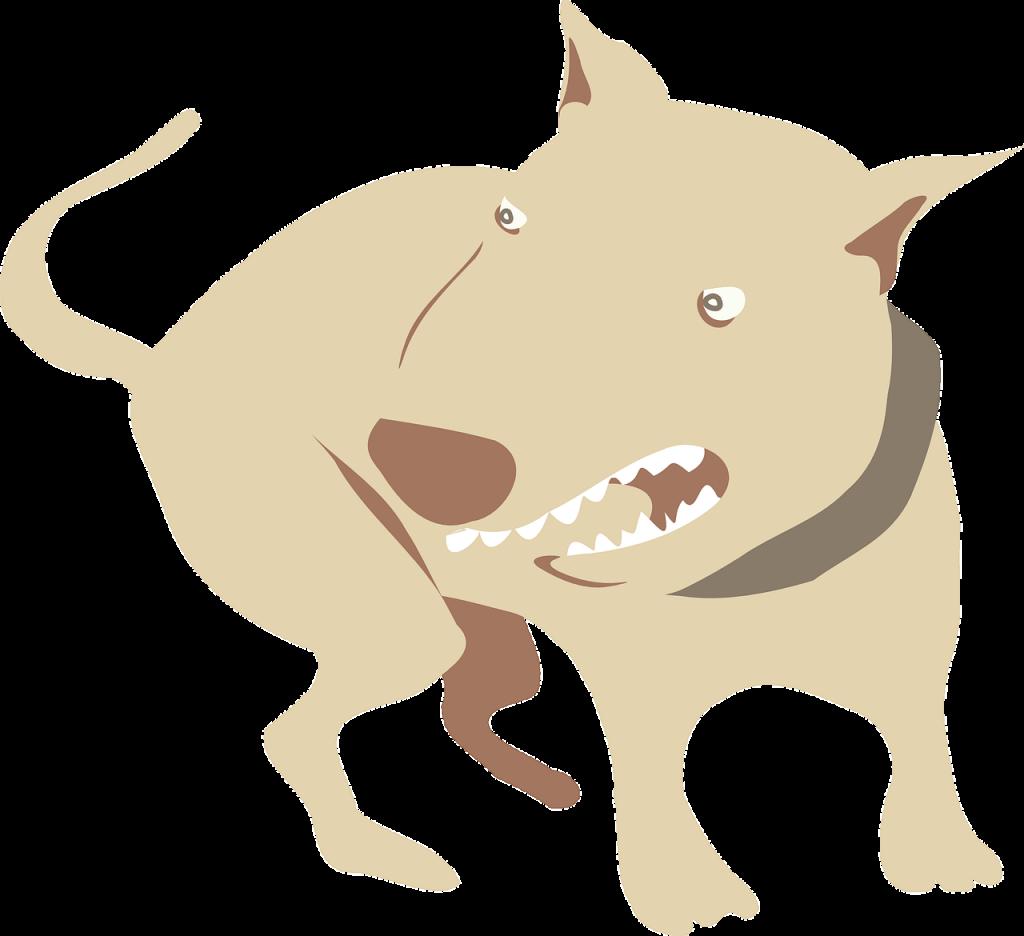 개 물림 사고