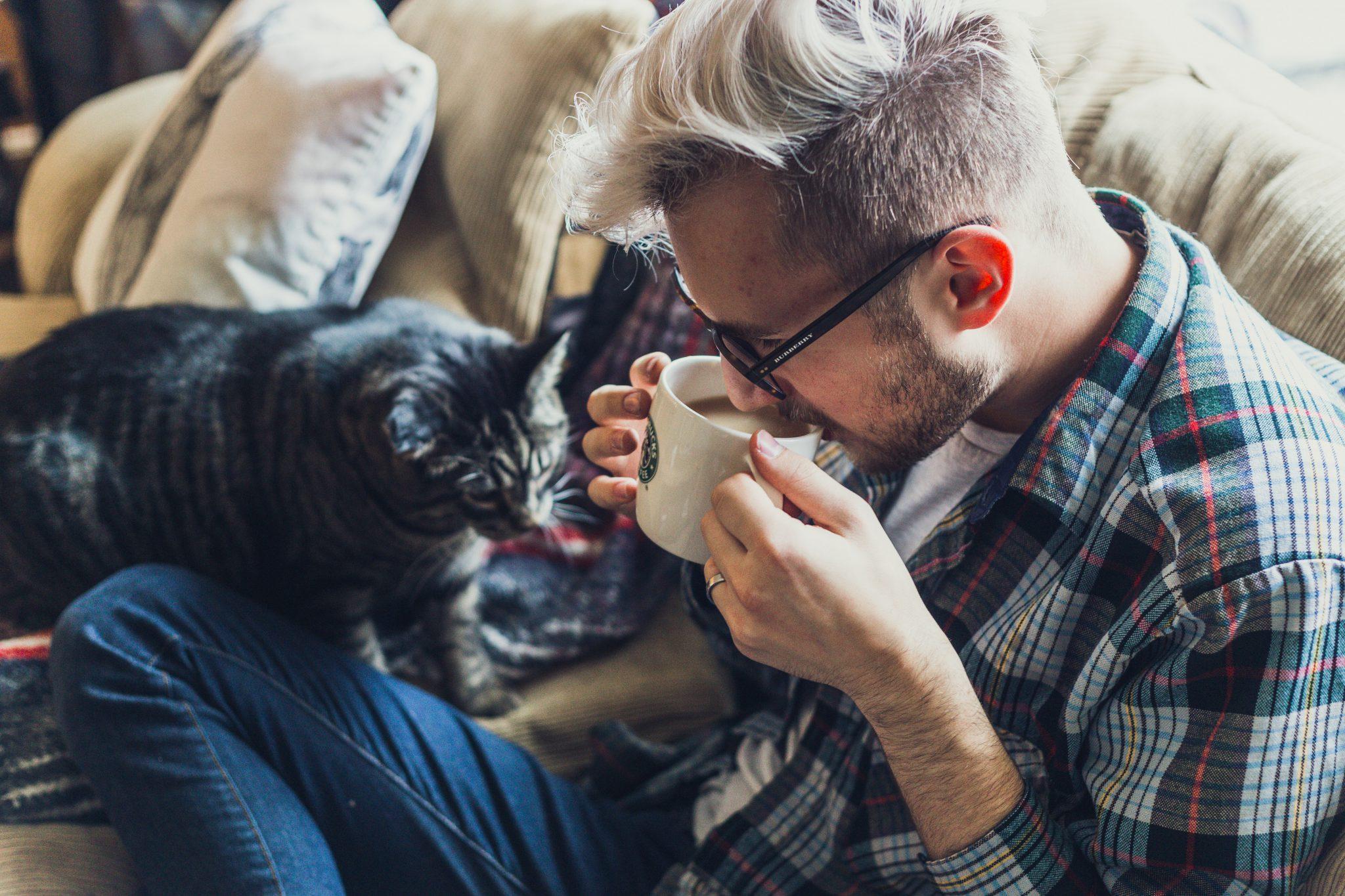 고양이 커피