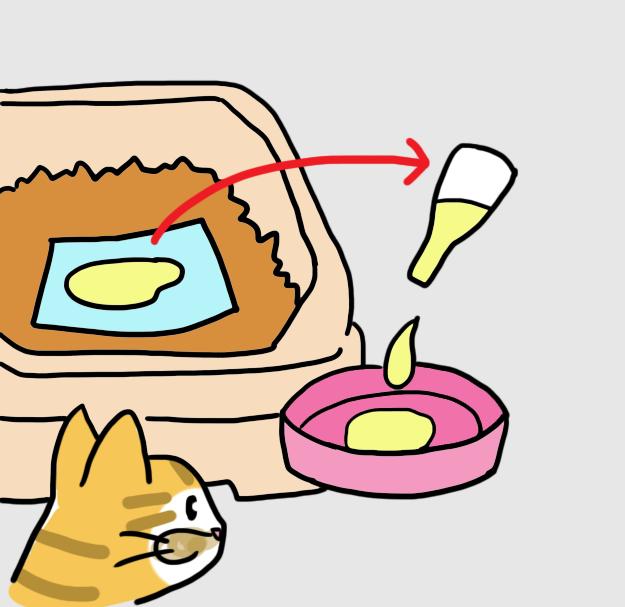 고양이 소변