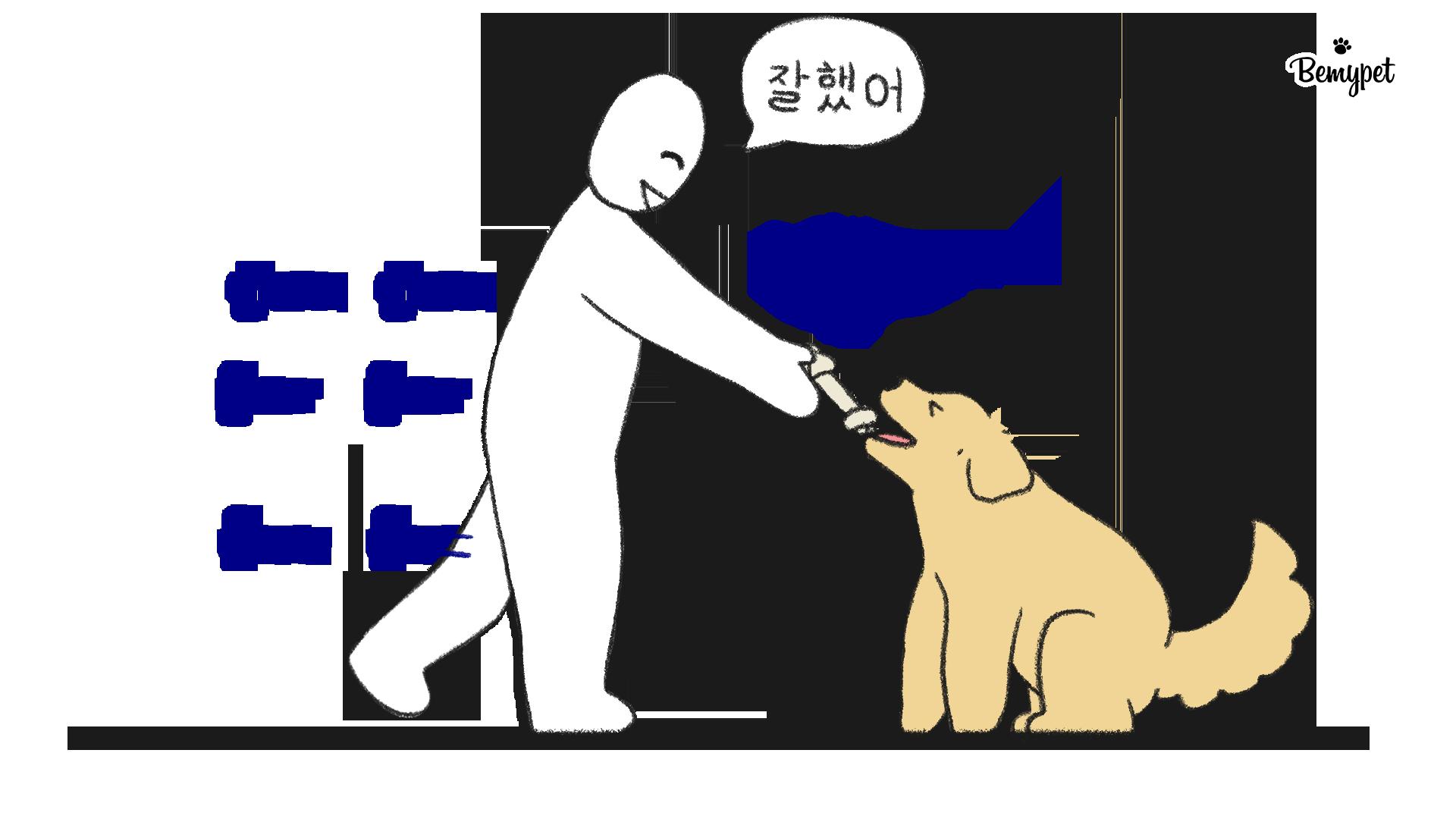 강아지 기다려 훈련