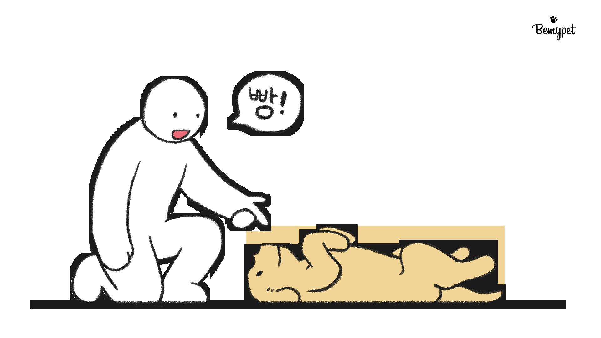 강아지 빵 훈련