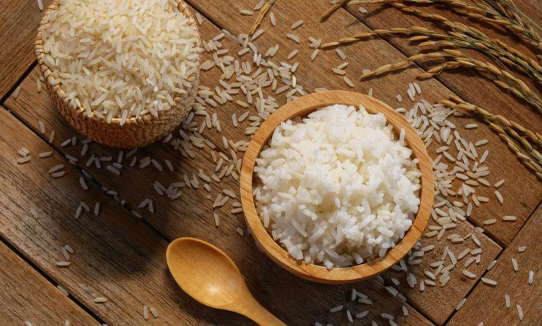 강아지 쌀밥