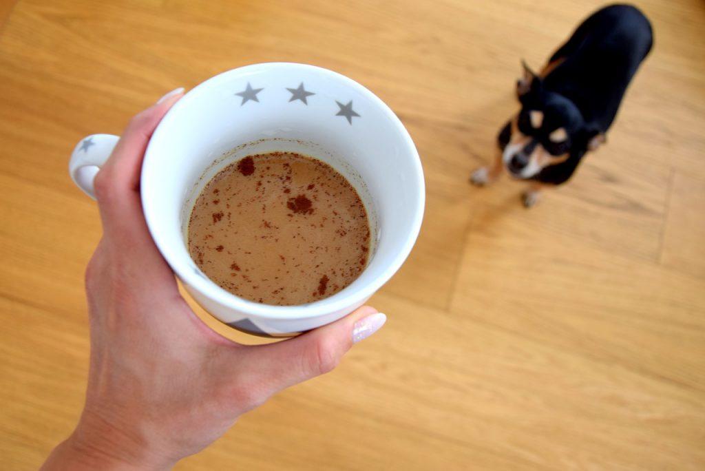 강아지 커피