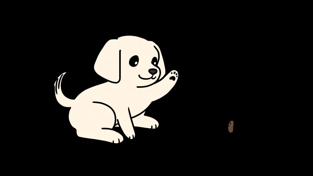 강아지 대변