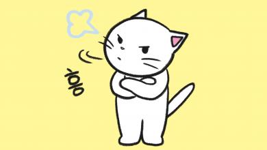 고양이 짜증