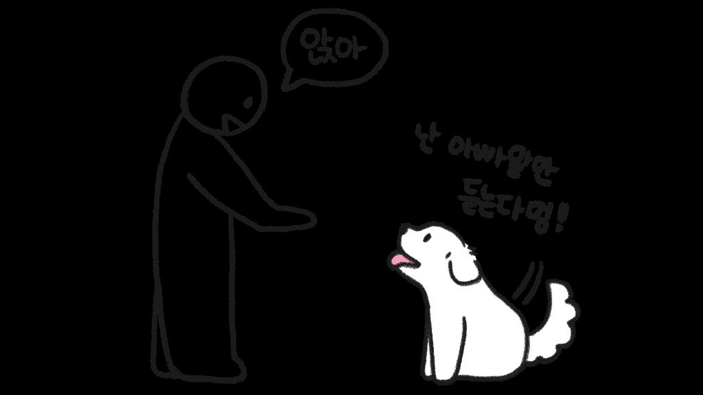 강아지 성격