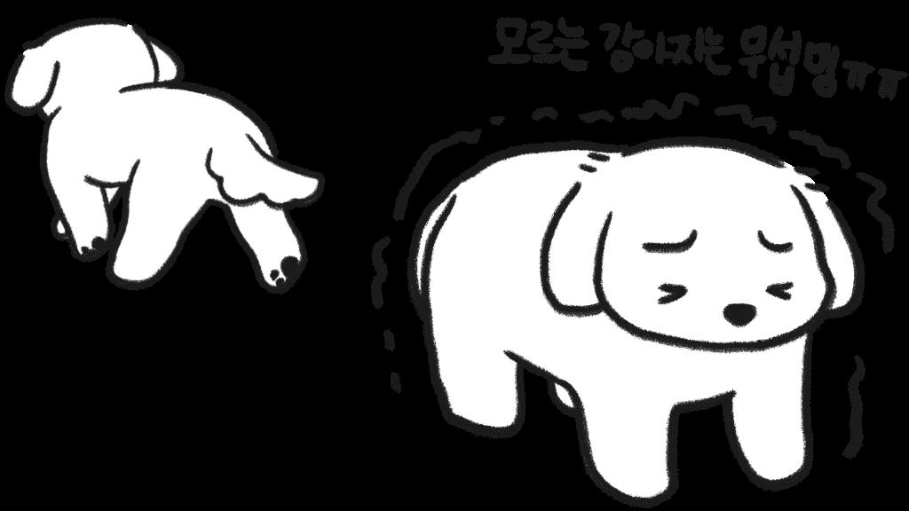 강아지 몸 떨림