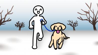 강아지 겨울 산책