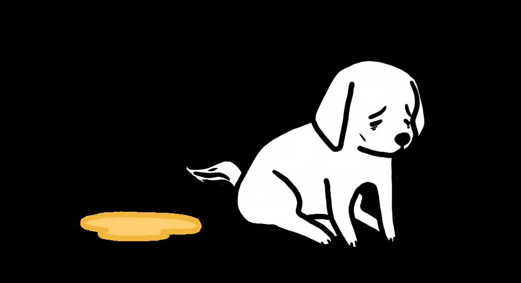 강아지 죽음