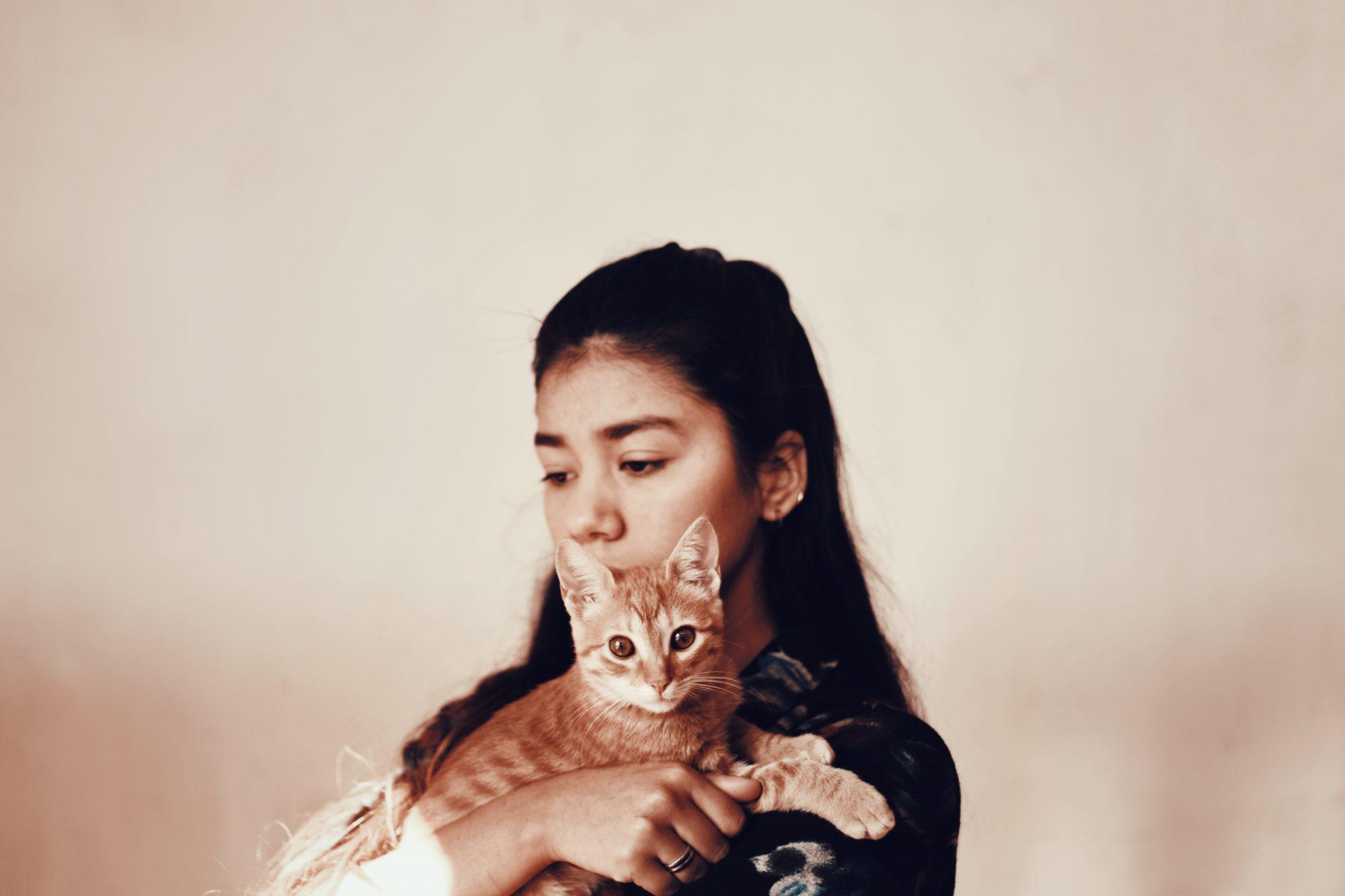 고양이 키우기