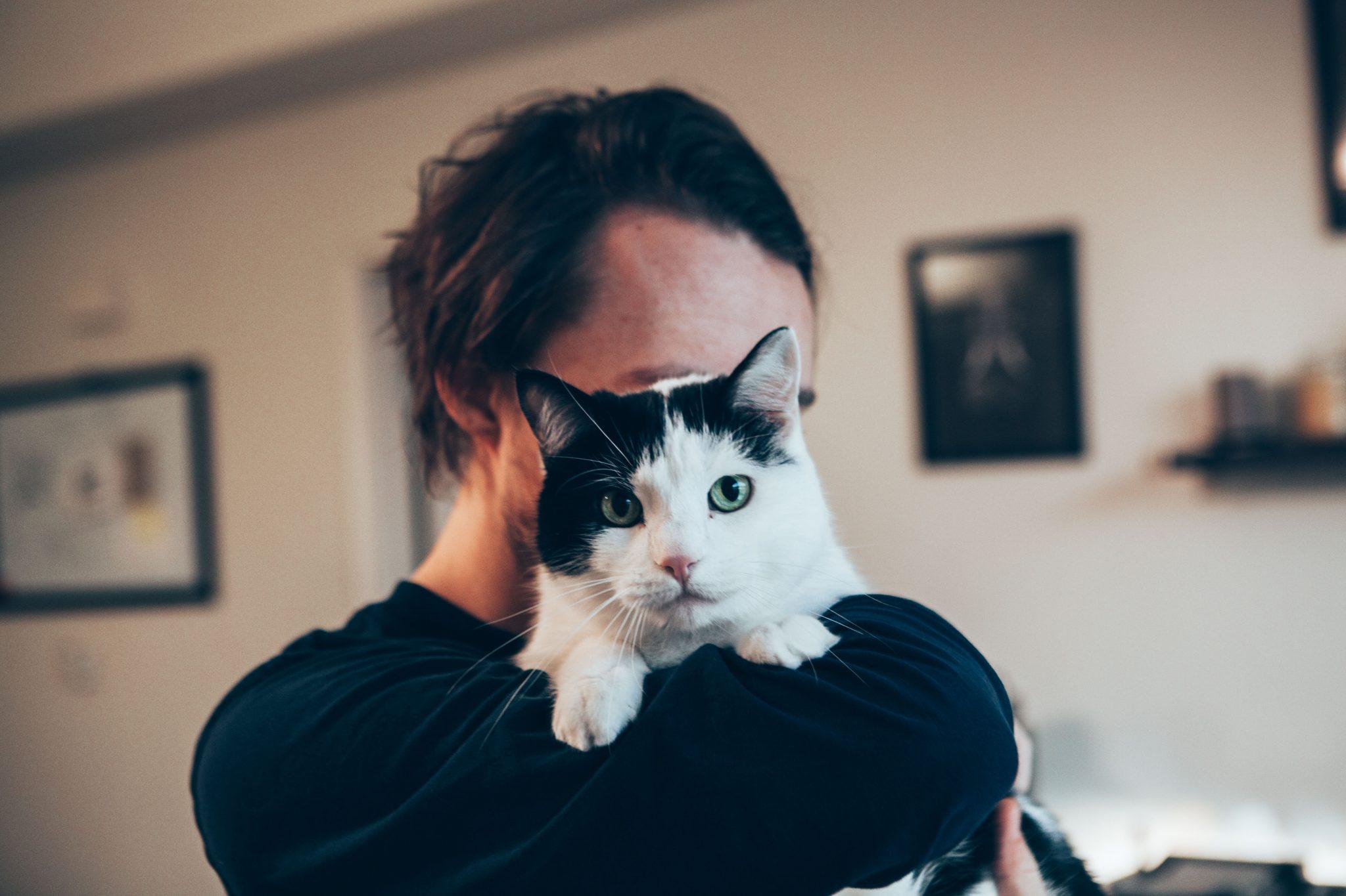 집사와 닮아가는 고양이