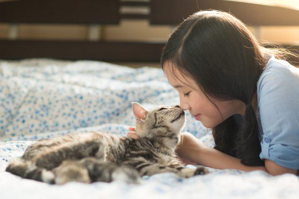 고양이가 사랑받는