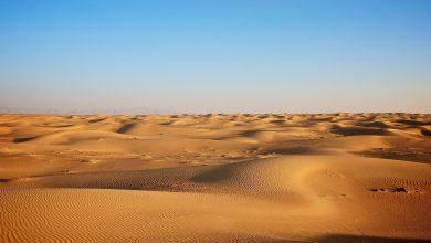 사하라 사막