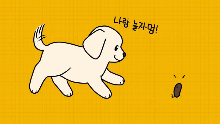 강아지 배변