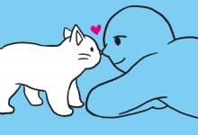 고양이의 좋아요