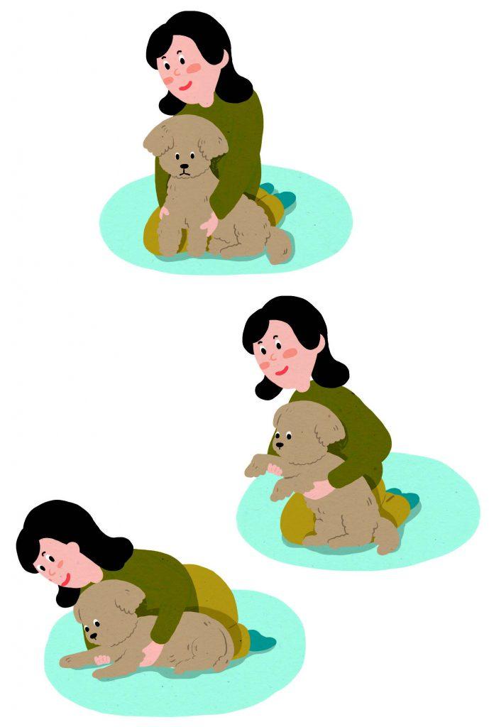 강아지 엎드려