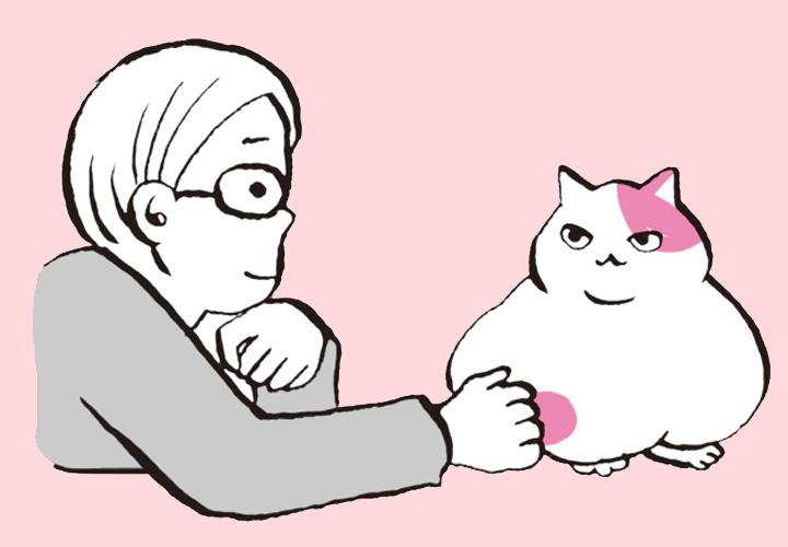 고양이 암