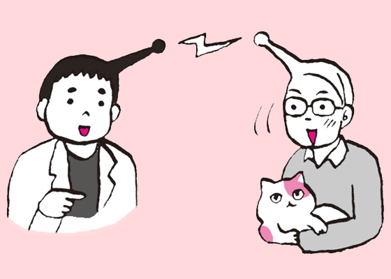 고양이 병원