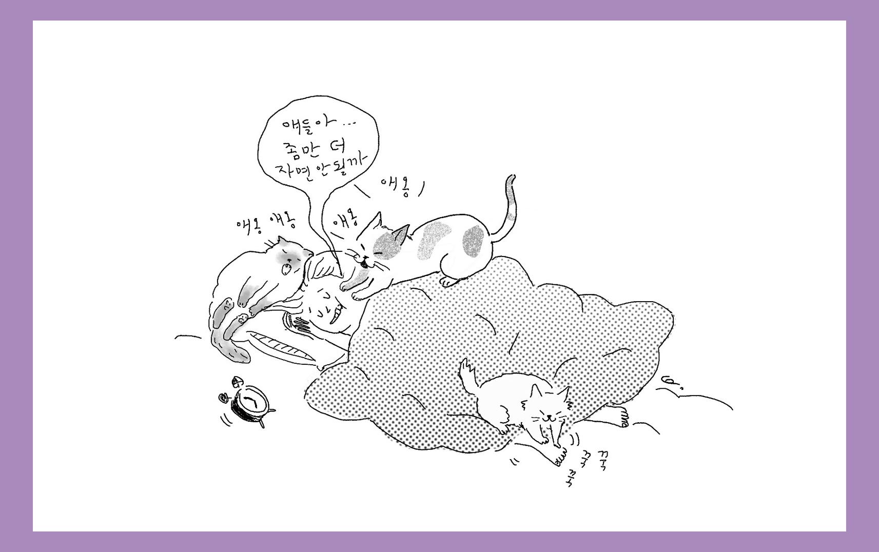 고양이 골골송