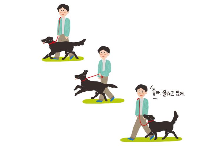 강아지 목줄