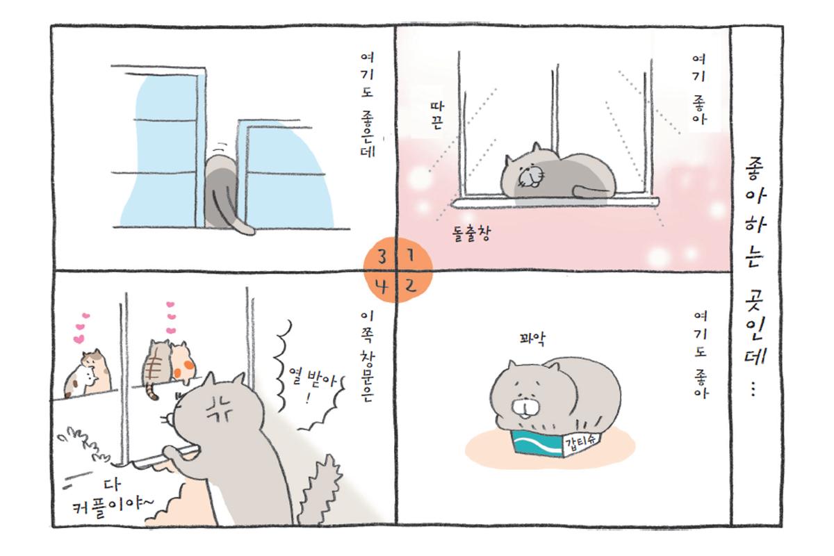 고양이가 좋아하는