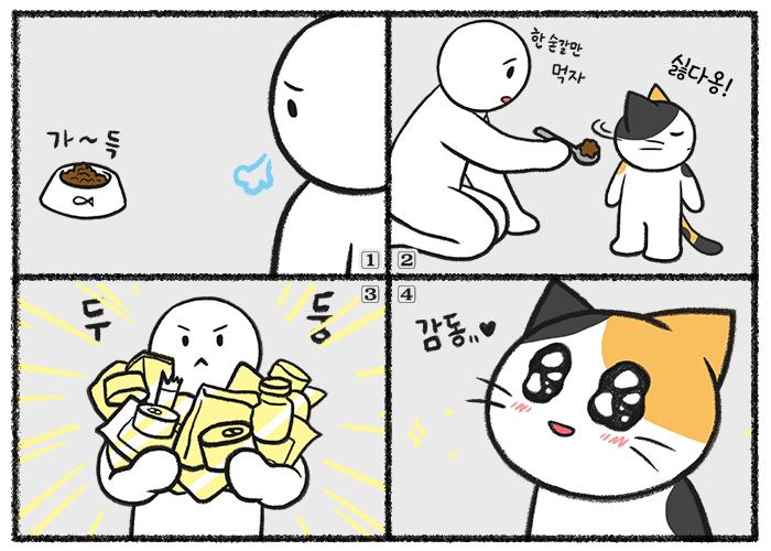 고양이 밥 안