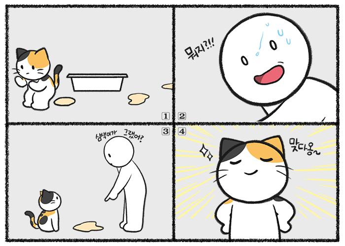 고양이가 소변을