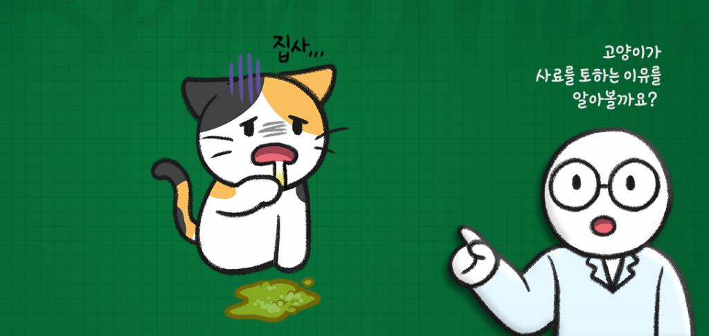 고양이가 사료