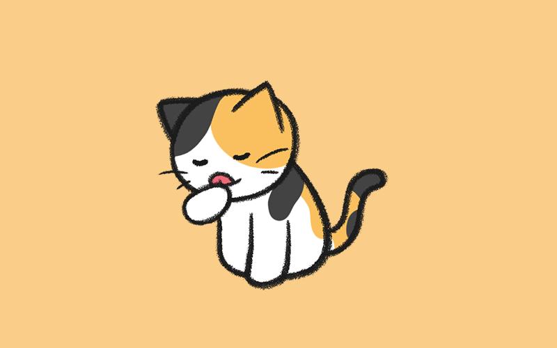 집사에게 혼난 고양이