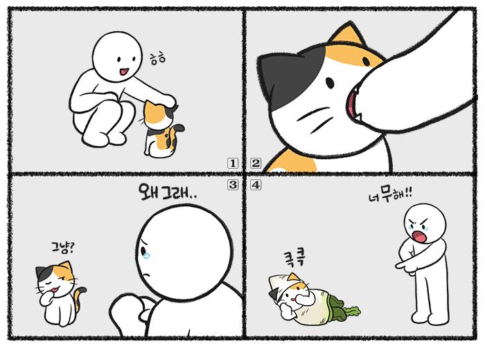 고양이가 손