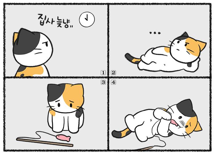 고양이가 아플 때