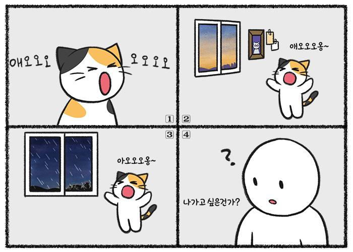 고양이가 창문