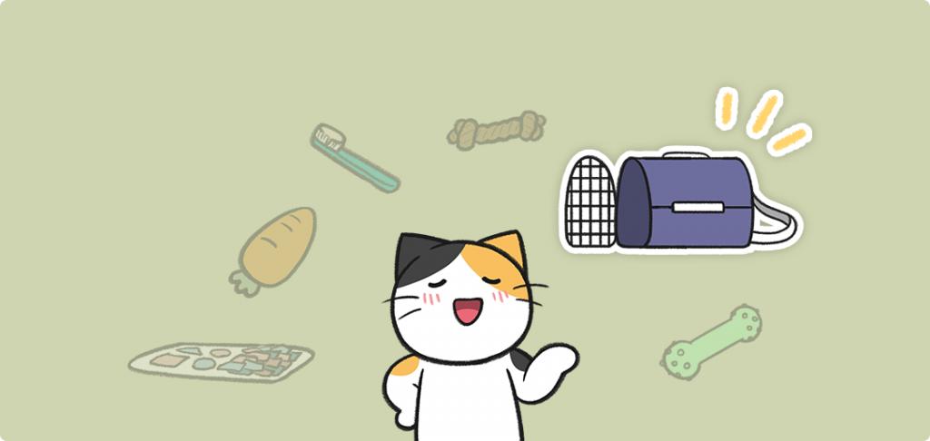 고양이 이동장 추천