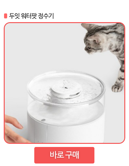 고양이 정수기