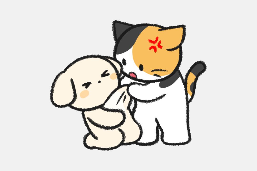 사람 구한 고양이