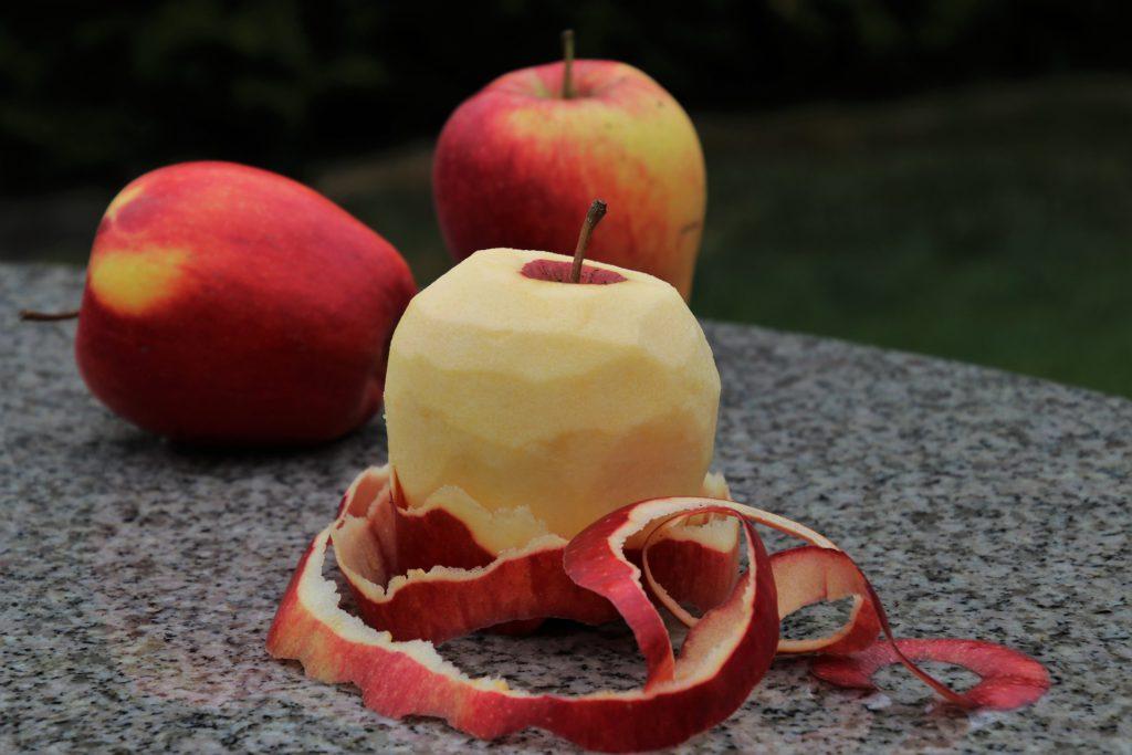 강아지 사과 껍질