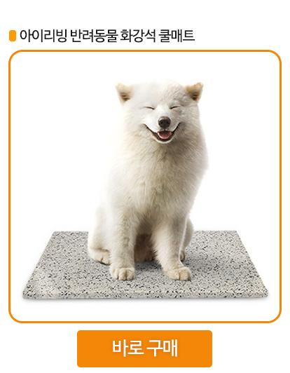 강아지 쿨매트