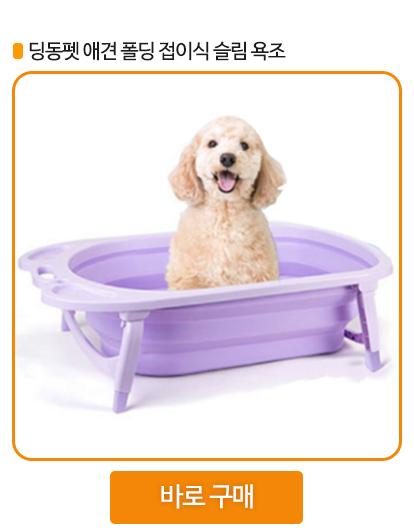 강아지 욕조